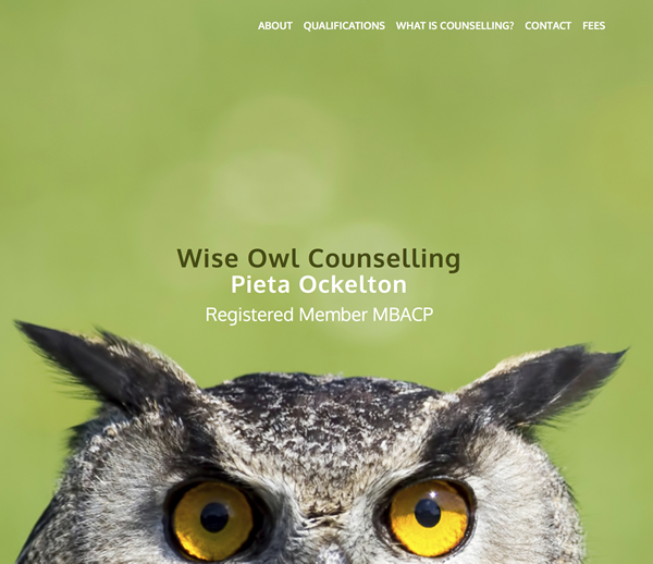 Wise Owl Counselling